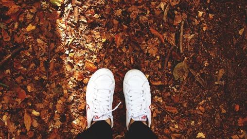shoes-480217_1280